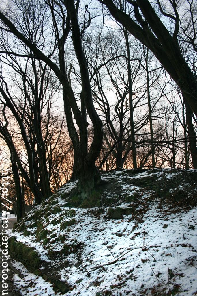Consejos para fotos en la nieve