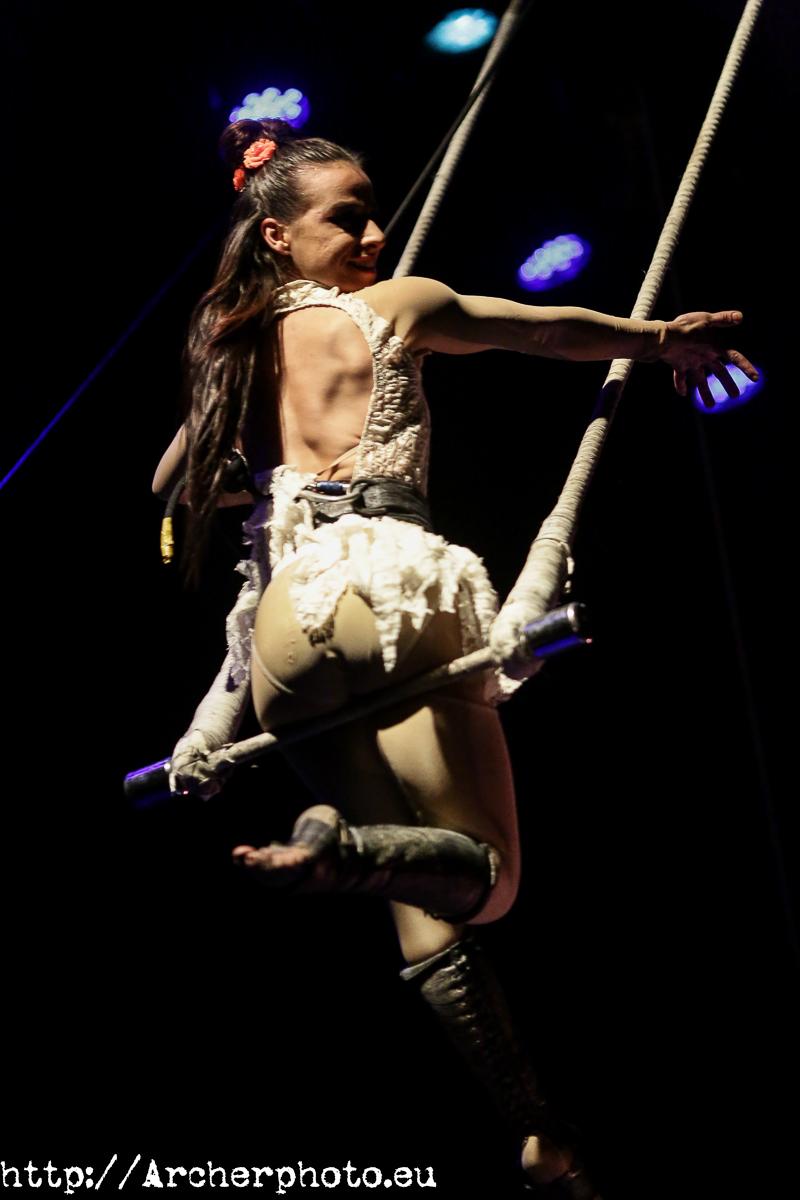 Fotos en el circo