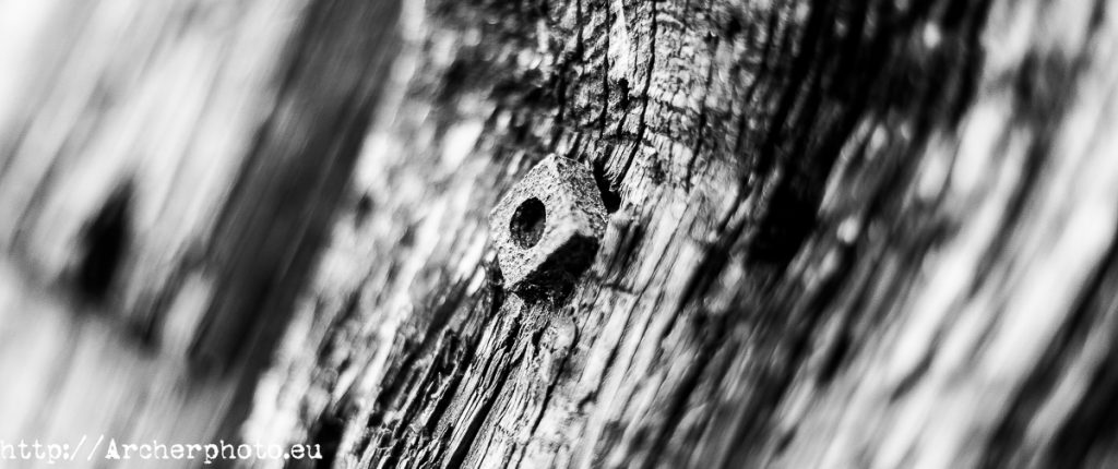 Wood and screw, by Archerphoto, commercial photographer in Spain