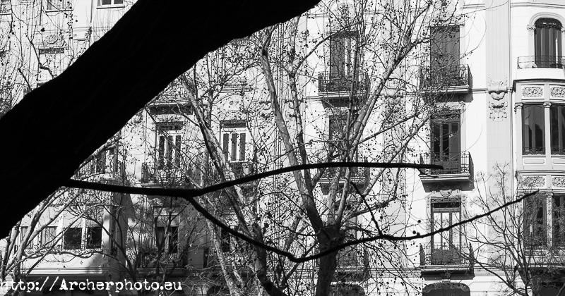 Valencia, fotografo, edificio