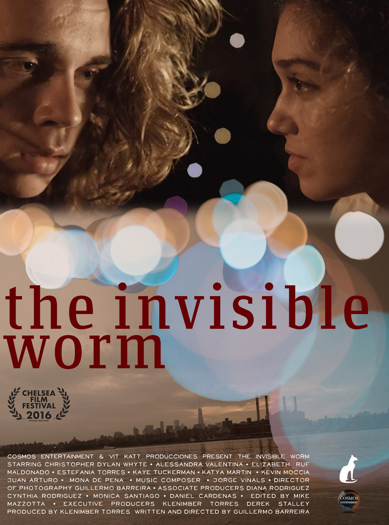 Invisible Worm