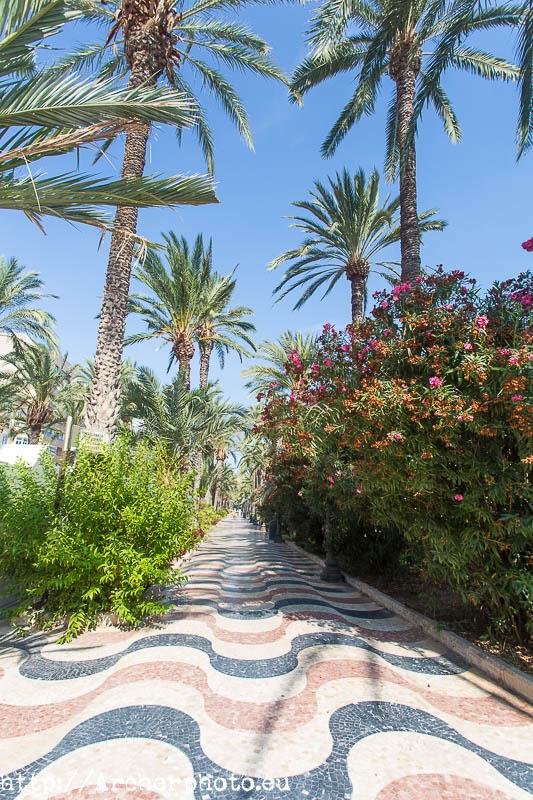 Alicante. Foto de Archerphoto, fotografo en Alicante.