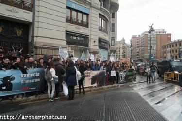 Manifestación antitaurina en Valencia por Archerphoto, foografo prfesional